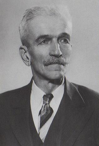 vladislav skaric istoricar